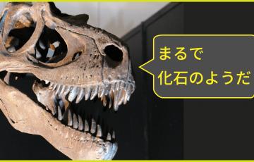 楽天市場の謎と答え(その2)DOCTYPE宣言が無い化石モール