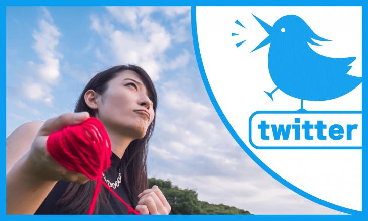 Twitterタイムラインの埋め込みとデザインカスタマイズの方法