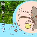 簡単トラップで魚を捕獲! Youtubeで見つけた面白動画