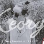 WordPressテーマ「Xeory Extension」をカスタマイズ(その5)テーマ設定:会社情報の設定・他